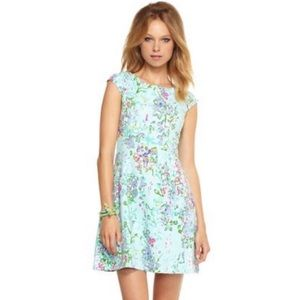 Lilly Pulitzer Brielle Southern Charm Dress Floral